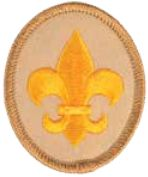 Justseeds | Queer Scout Badge